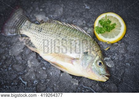 Tilapia Fish Freshwater For Cooking Food In The Asian Restaurant, Fresh Raw Tilapia From Farm On Ice