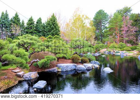 Lush Manicured Plants And Trees Surrounding A Tranquil Koi Pond Taken At A Zen Japanese Garden In Th