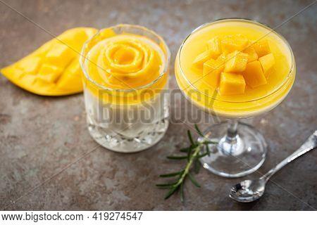 Italian Dessert Panna Cotta With Mango In Glass On Gray Background