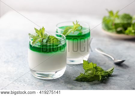 Dessert Panna Cotta With Mint Sauce And Fresh Mint On White Background