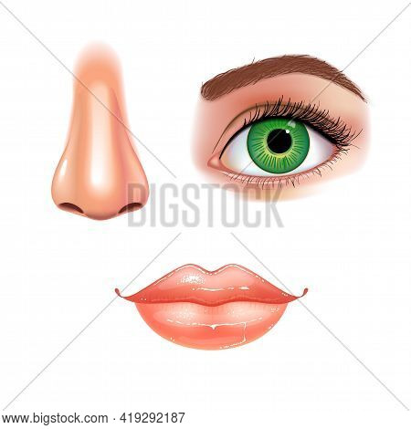 Set Of Beautiful Female Eye With Extended Eyelashes, Nose And Shining Mouth With Glossy Lips. White