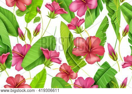 Hibiscus Vector Floral Seamless Pattern, Red Petals, Hawaii Summer Texture, Banana Leaves On White.