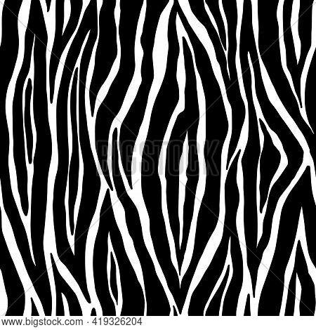 Zebra Seamless Pattern. Black And White Zebra Stripes. Vector Zoo Fabric Animal Skin Material