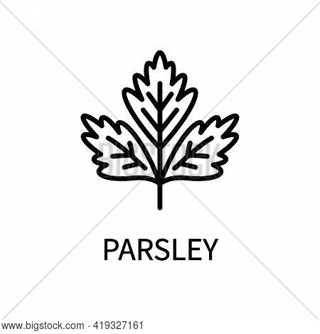 Parsley Line Icon In Simple Style. Healthy Food. Natural Product. Vector Sign In A Simple Style Isol