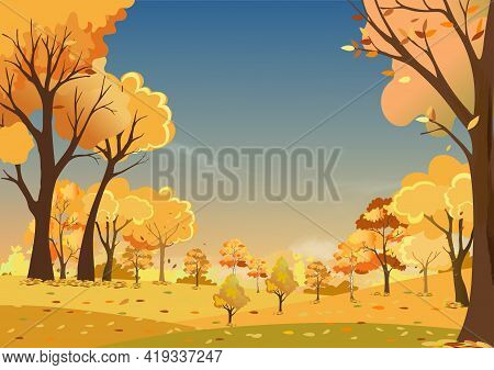 Autumn Landscapes Of Countryside In Evening Sunset With Morning Sky,panoramic Of Mid Autumn In Farm