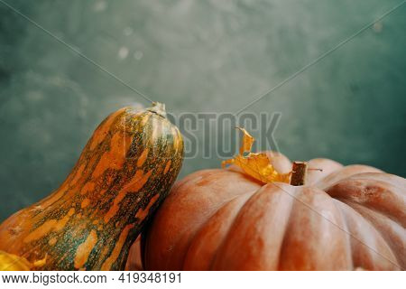 Autumn Composition Of Pumpkins On A Green Background. Striped Pumpkin And Orange Pumpkin. The Concep