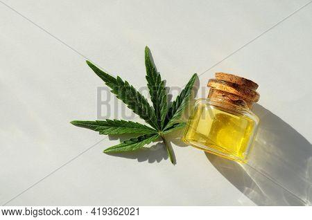 Marijuana Oil, Cbd Recreation. Fresh Cannabis Leaf Close Up, Isolated On White Background. Home Rela