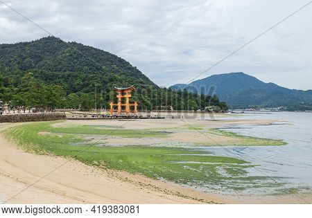 Mass Of Visitors And School Group Walking At The Floating Torii Gate Druing Ebb In Miyajima, Hiroshi