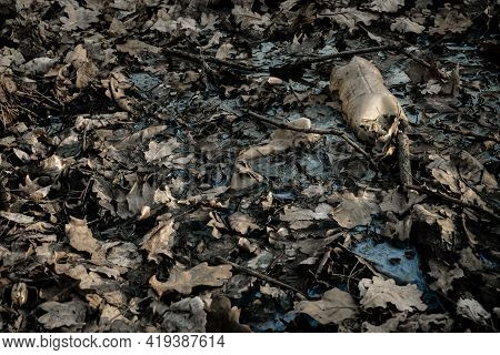 Plastic Garbage Trash In Forest Woodland. Rubbish Waste In Environment. Empty Used Dirty Bottles In