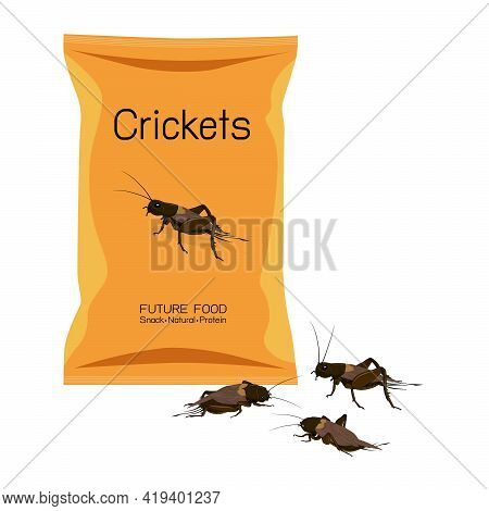 Food Insects : Crickets Insects Deep-fried Crispy In Packaging Snack Pouch Wrapper Ready To Eating F