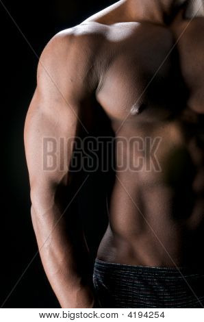 Abdominals And Biceps In Shadows