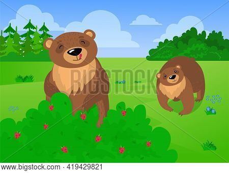 Two Cute Brown Bears Eating Forest Raspberries. Cartoon Vector Illustration. Fantasy Wild Animals Pi