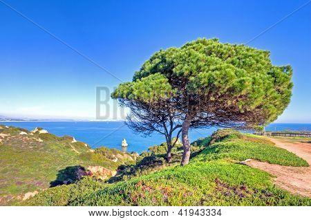 Portuguese landscape at the southcoast near Lagos in the Algarve Portugal