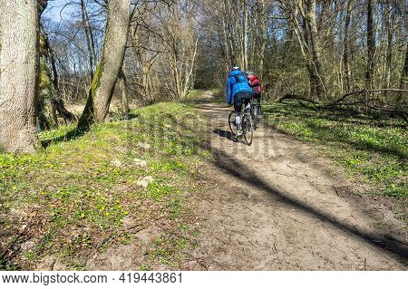 Kaliningrad Region, Russia, April 11, 2020. Riding A Bicycle In The Woods In Spring. Two People Ridi