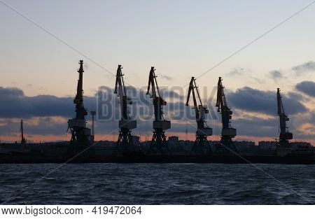 Marine Cargo Cranes In The Seaport In The Twilight At Dawn