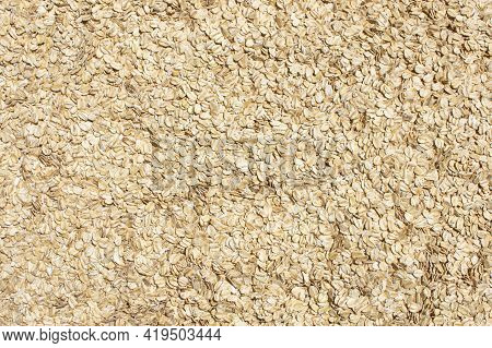 Large Display Of Oats Grains Wheat Breakfast Cereal In Natural Sunlight Food Background