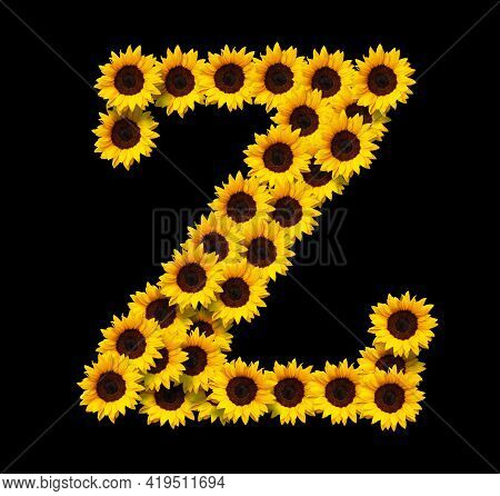 Capital Letter Z Made Of Yellow Sunflowers Flowers Isolated On Black Background. Design Element For