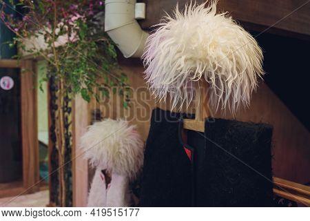 Traditional Caucasian Georgian Sheepskin Clothes And Hats. Georgian Souvenirs.