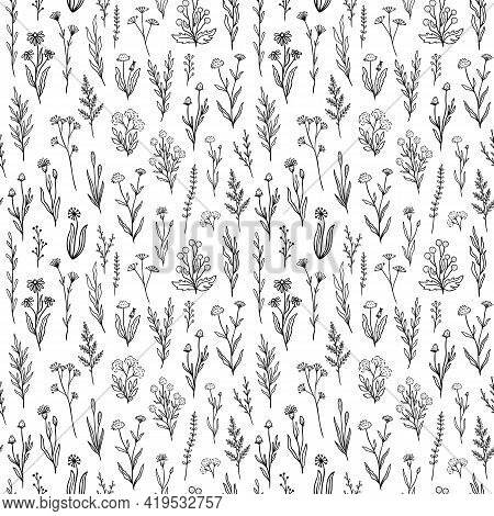 Wildflower Seamless Pattern With Outline Florals. Retro Style Print Design With Hand Drawn Doodle Fl