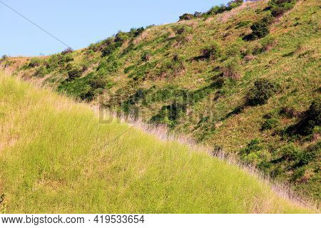 Rural Hillside Slopes And Ridges Surrounded A Canyon Covered With Chaparral Shrubs And Mustard Plant