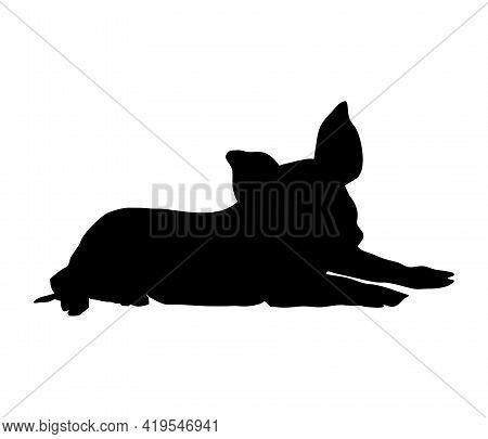 Piglet Lies Silhouette. Little Piggy Solid Realistic Shape