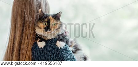 Woman With Long Hair Holding On Her Shoulder And Hugging Her Pet To Her - Three-color Young Cat. Ban
