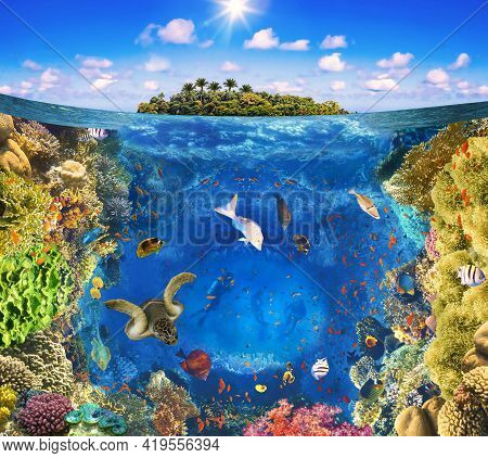 Group Of Scuba Divers Exploring Coral Reef. Underwater Sports And Tropical Vacation. Beautiful Sunny