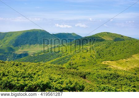 Mountain Landscape In Summer. Beautiful Scenery On A Sunny Day. View In To The Distant Ridge Under T