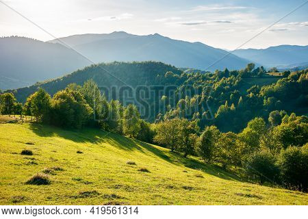 Rural Landscape In Mountains At Sunset. Trees And Fields On Grassy Rolling Hills. Beautiful Countrys