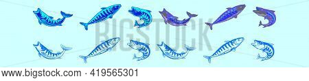 Set Of Mackerel Fish Cartoon Icon Design Template With Various Models. Modern Vector Illustration Is