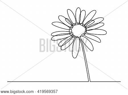 Chamomile Continuous One Line Drawing. Cute Chamomile Isolated White Background. Vector Illustration