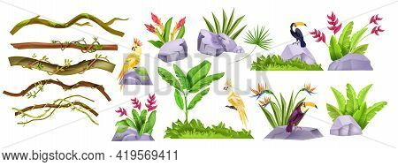 Jungle Stone Vector Object Set, Exotic Plants, Liana Collection, Tropical Flowers, Parrot, Toucan, C