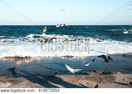 Stormy Sea, Ocean With White Foam And Background Many Seagulls Soar In The Sky. Horizon Of The Sea.