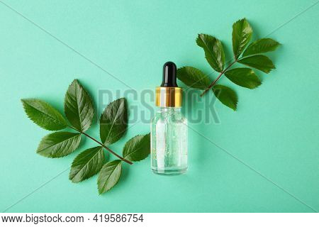 Natural Skincare Bottle Container And Organic Green Leaf , Flowers Ingredients With The Laboratory G