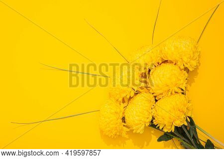 Chrysanthemum Flowers On A Yellow Background With Copy Space. Banner Frame With Lush Bouquet In A Mi