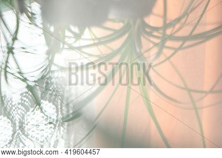 Abstract Background From Reflection In Glass Of Flower And Fabric On The Window. Mirror Reflection B