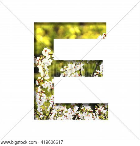 Spring Sunny Font. The Letter E Cut Out Of Paper On The Background Of Blooming Cherry On A Sunny Spr