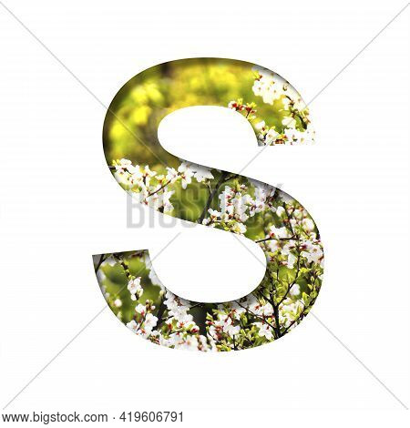 Spring Sunny Font. The Letter S Cut Out Of Paper On The Background Of Blooming Cherry On A Sunny Spr