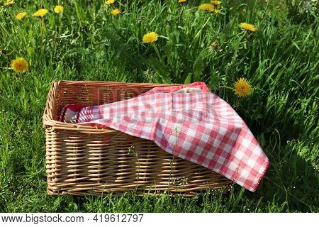 Wicker Picnic Basket With Red And White Checkered Tablecloth On Green Grass And Yellow Dandelion Flo