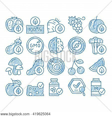 Organic Eco Foods Sketch Icon Vector. Hand Drawn Blue Doodle Line Art Organic Tomato And Mushrooms,