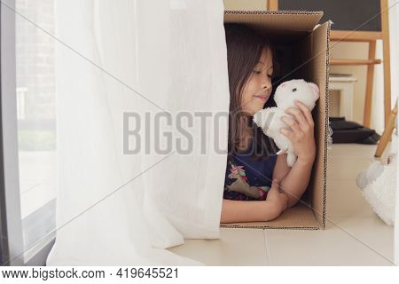 Mixed Asian Girl Playing With Plush Toys In Cardboard Box, Make Believe Play, Homeschooling Concept