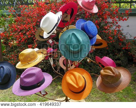 Handmade Panama Hats Or Paja Toquilla Hats Or Sombreros Of Different Style At The Traditional Outdoo