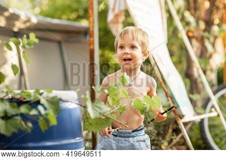 Preschooler Child Having Fun. Funny Little Boy Playing In Sunny Backyard. Summer At Countryside. Joy
