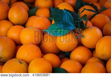 Oranges Background. Fresh Oranges Variety Grown In The Shop. Oranges Suitable For Juice, Strudel, Or