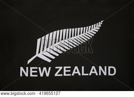 Close-up of New Zealand silver fern flag