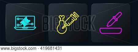 Set Line Genetic Engineering Modification, Pipette And Gmo Research Chicken. Black Square Button. Ve