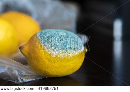 Yellow Bright Moldy Lemon With A Large Light Turquoise Textured Mold On A Dark Wooden Table. Spoiled