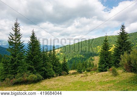 Mountainous Summer Landscape With View In To The Valley. Trees On The Hill Beneath A Cloudy Afternoo