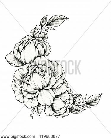 Vintage Spring Floral Composition, Black Ink Drawing Of Peonies Flower Arrangement Isolated On White