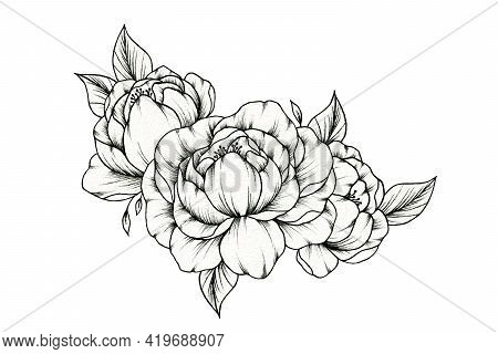 Vintage Hand Drawn Peony Bouquet Isolated On White, Floral Botanical Foliage With Peony Blossom, Bla